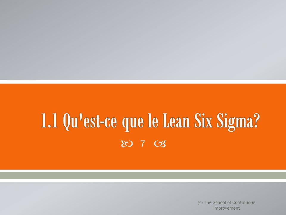 1.1 Qu est-ce que le Lean Six Sigma