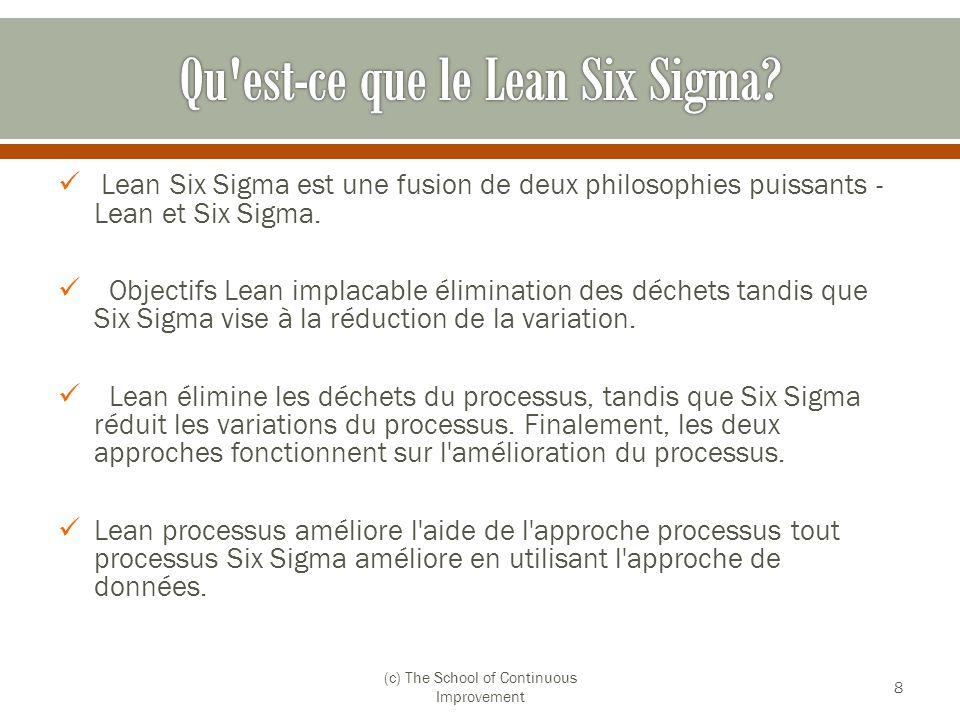 Qu est-ce que le Lean Six Sigma