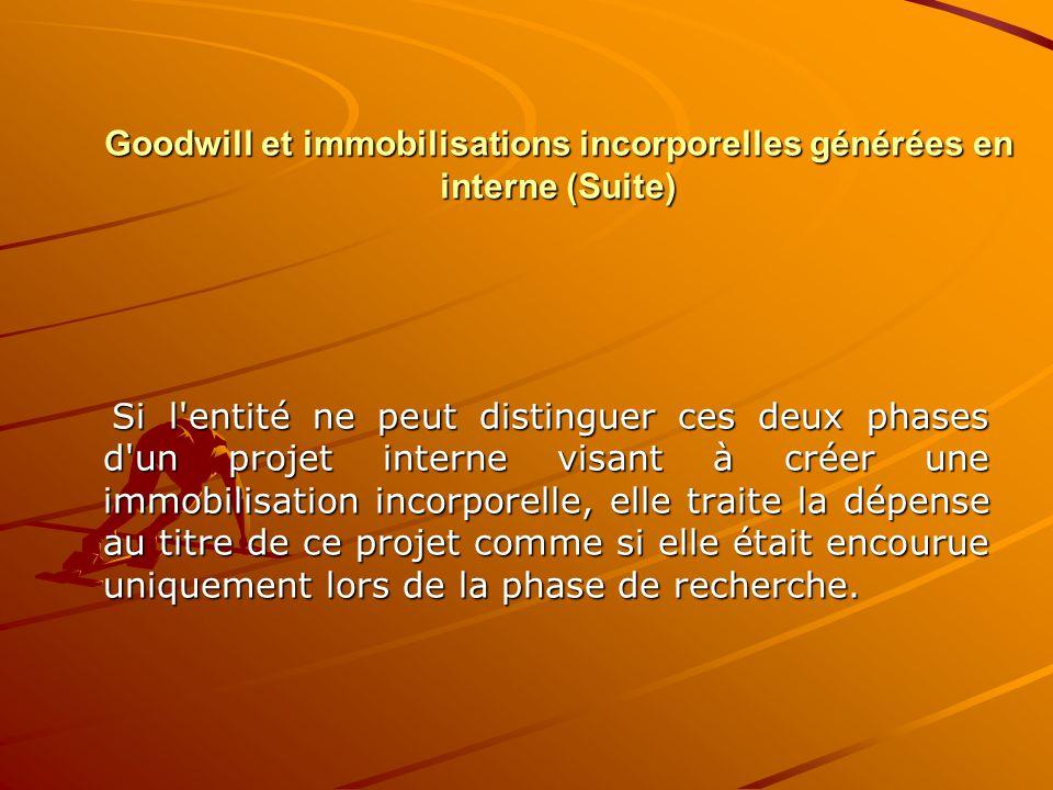 Goodwill et immobilisations incorporelles générées en interne (Suite)