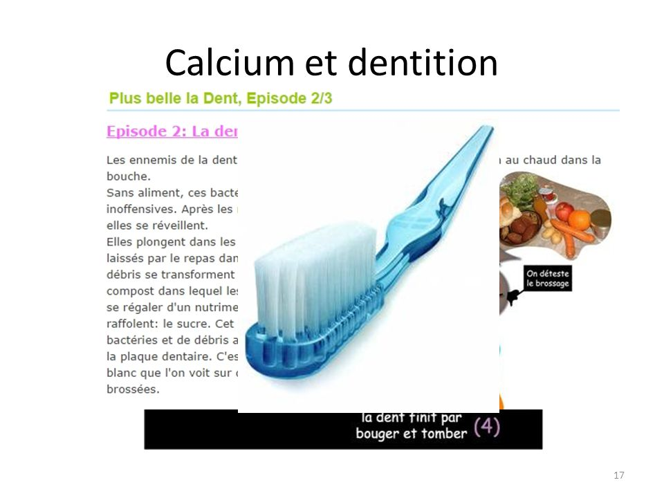 Calcium et dentition