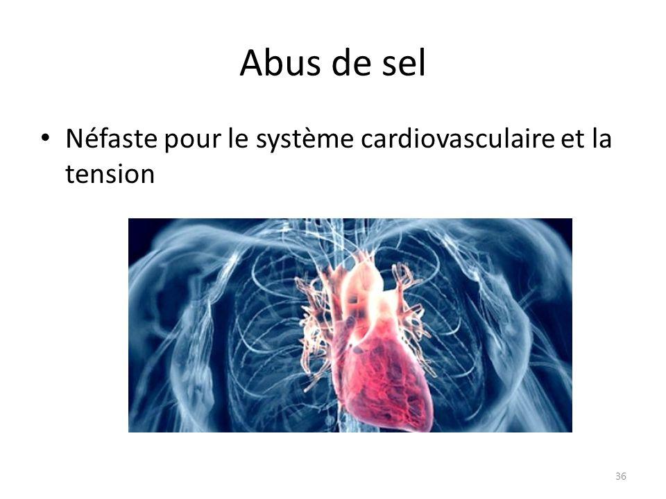 Abus de sel Néfaste pour le système cardiovasculaire et la tension