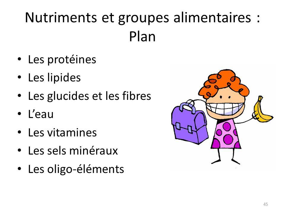 Nutriments et groupes alimentaires : Plan