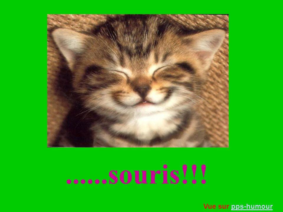 ......souris!!! Vue sur pps-humour
