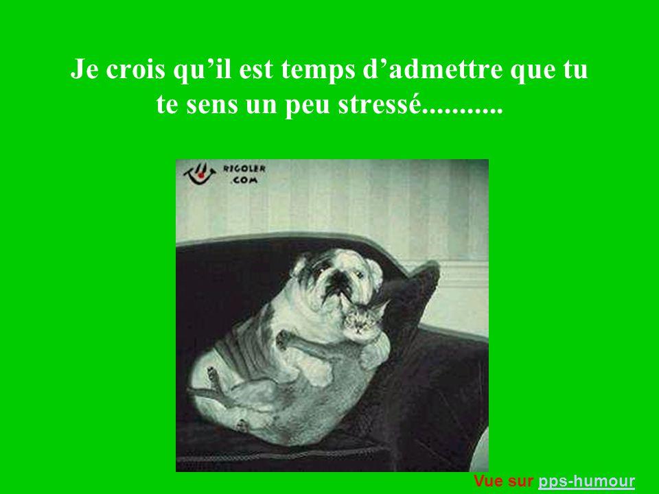 Je crois qu'il est temps d'admettre que tu te sens un peu stressé...........