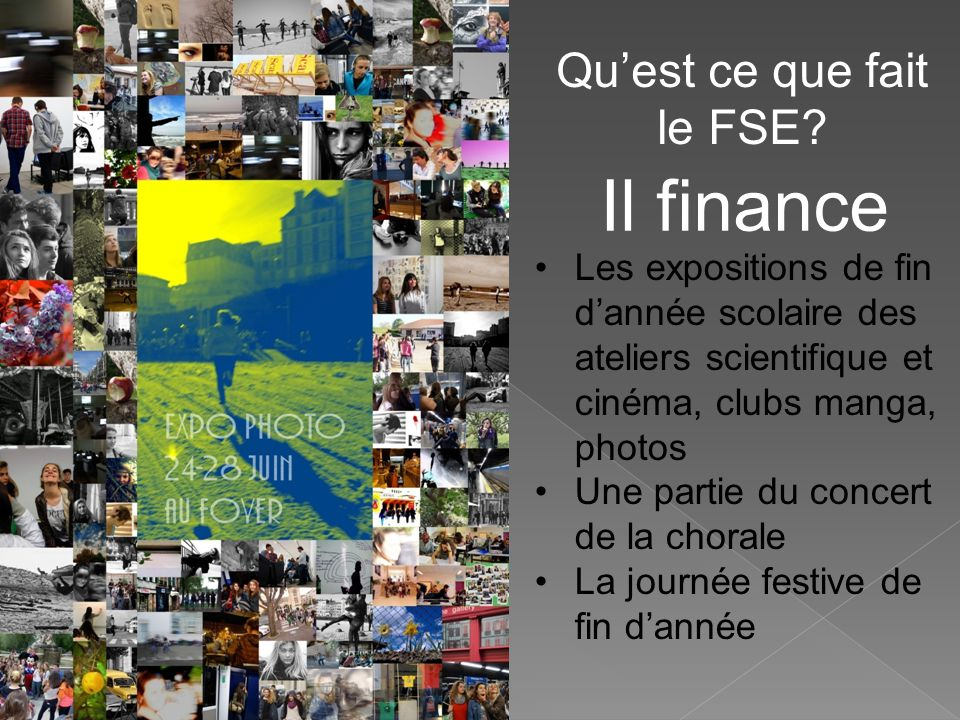 Qu'est ce que fait le FSE