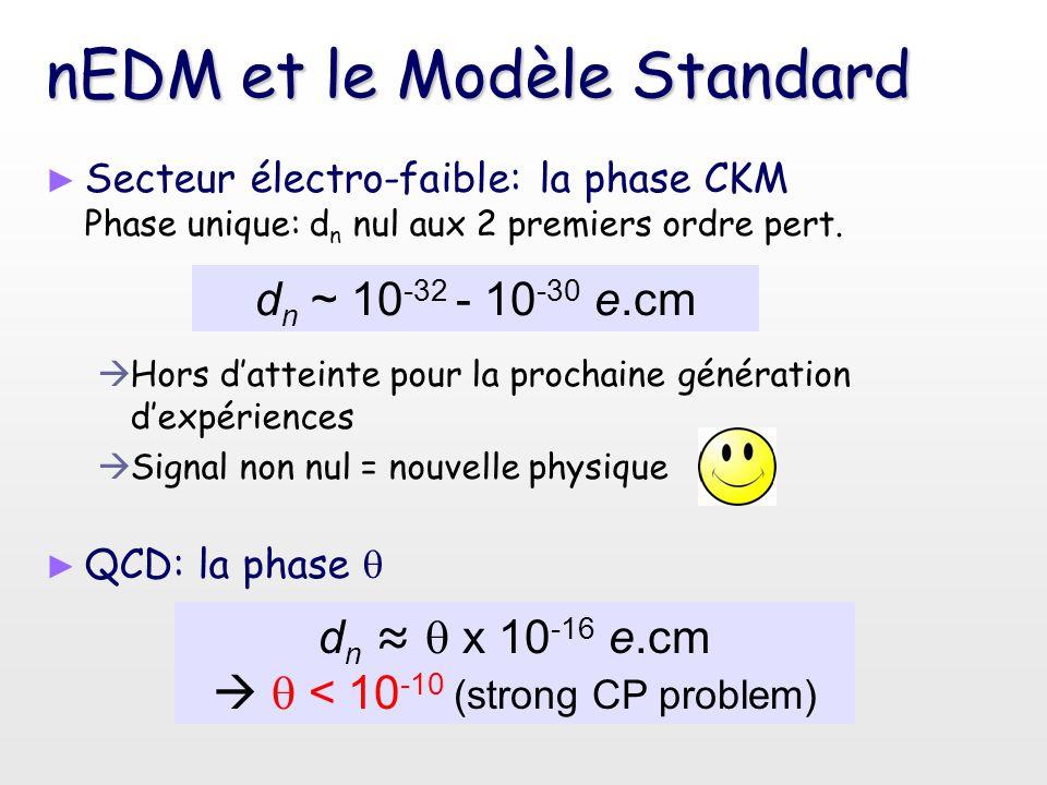 nEDM et le Modèle Standard