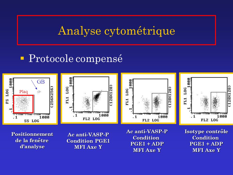 Analyse cytométrique Protocole compensé GB Ac anti-VASP-P Condition