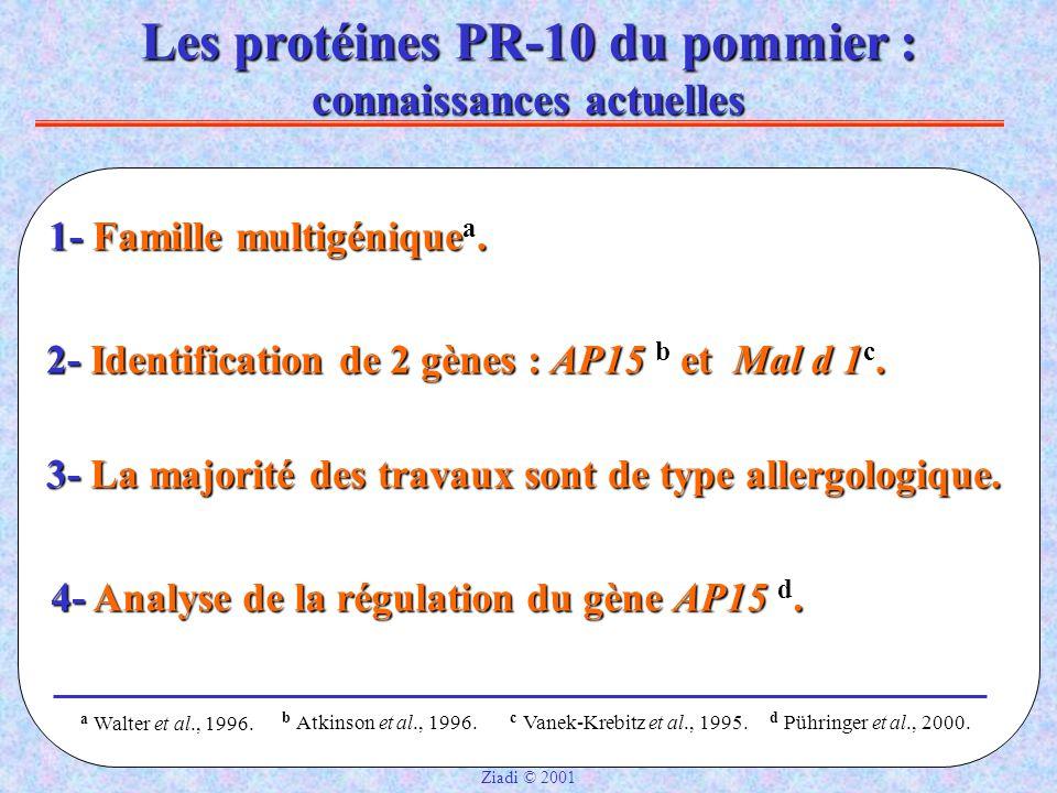 Les protéines PR-10 du pommier : connaissances actuelles