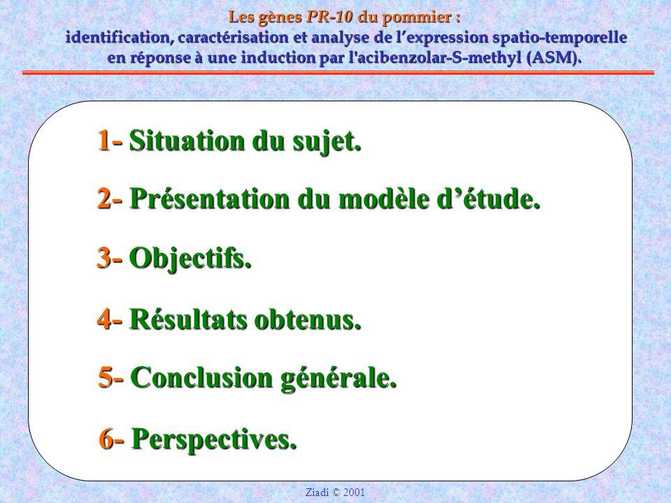 2- Présentation du modèle d'étude.