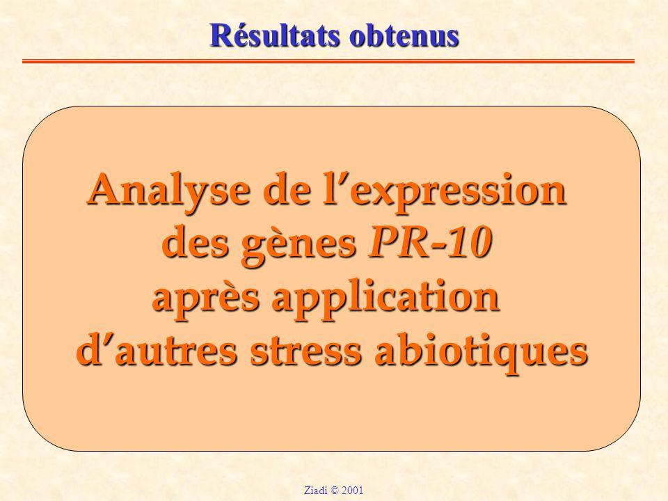 Analyse de l'expression d'autres stress abiotiques