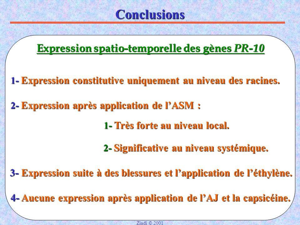 Conclusions Expression spatio-temporelle des gènes PR-10