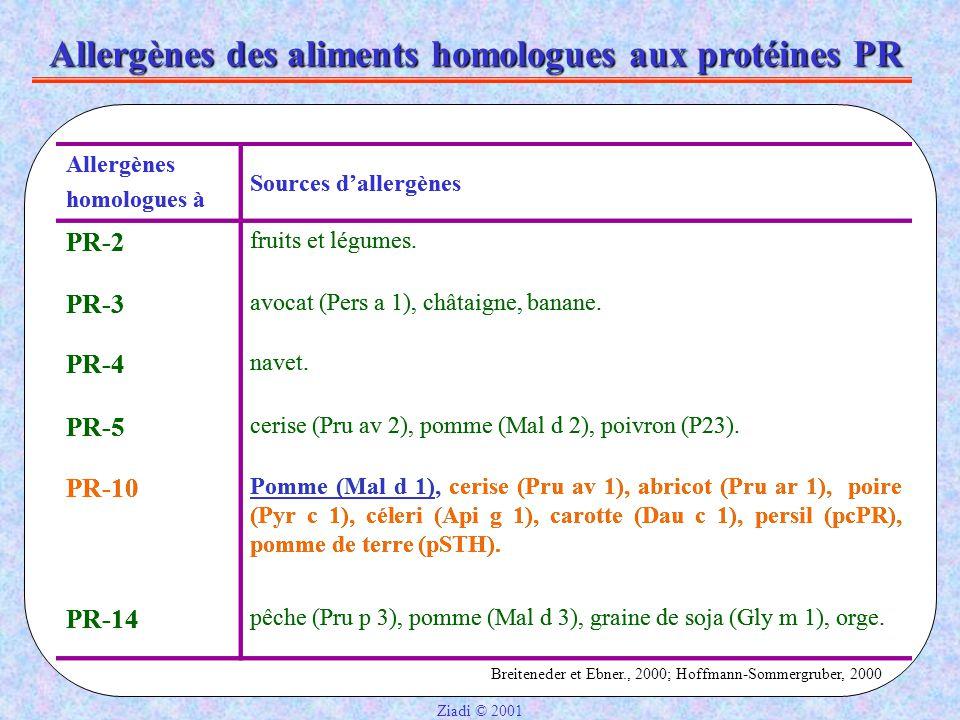 Allergènes des aliments homologues aux protéines PR