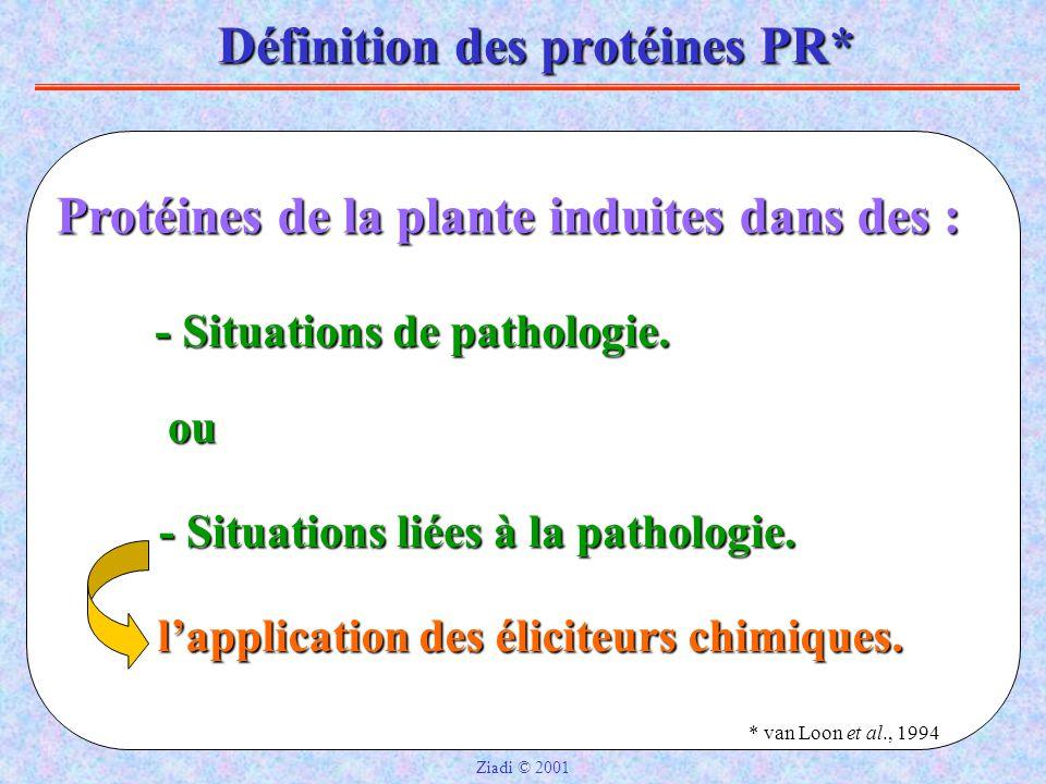 Définition des protéines PR*