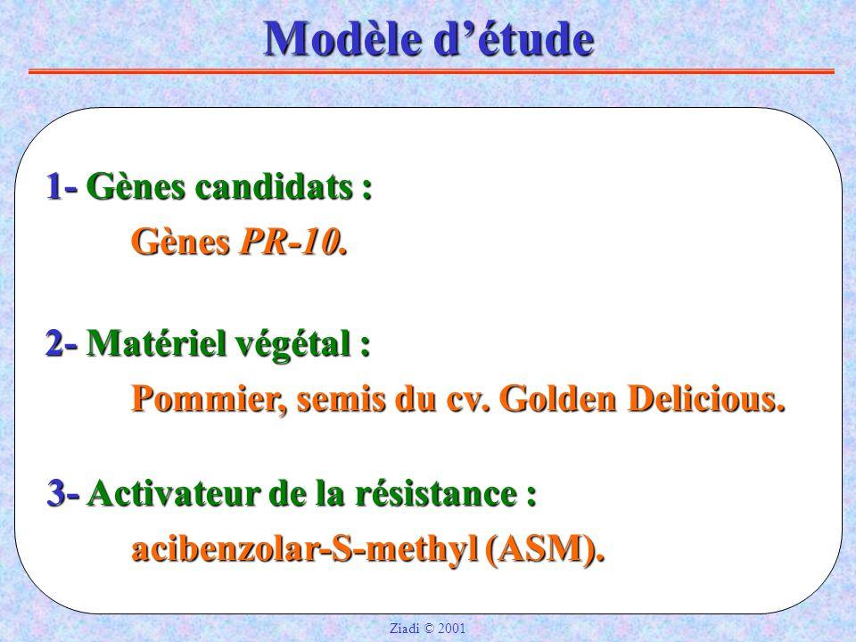 3- Activateur de la résistance : acibenzolar-S-methyl (ASM).