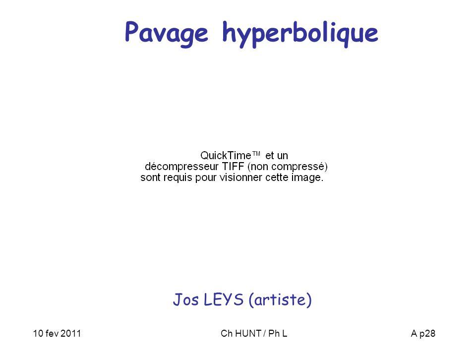 Pavage hyperbolique Jos LEYS (artiste) 10 fev 2011 Ch HUNT / Ph L