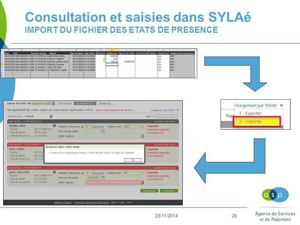 Consultation et saisies dans SYLAé