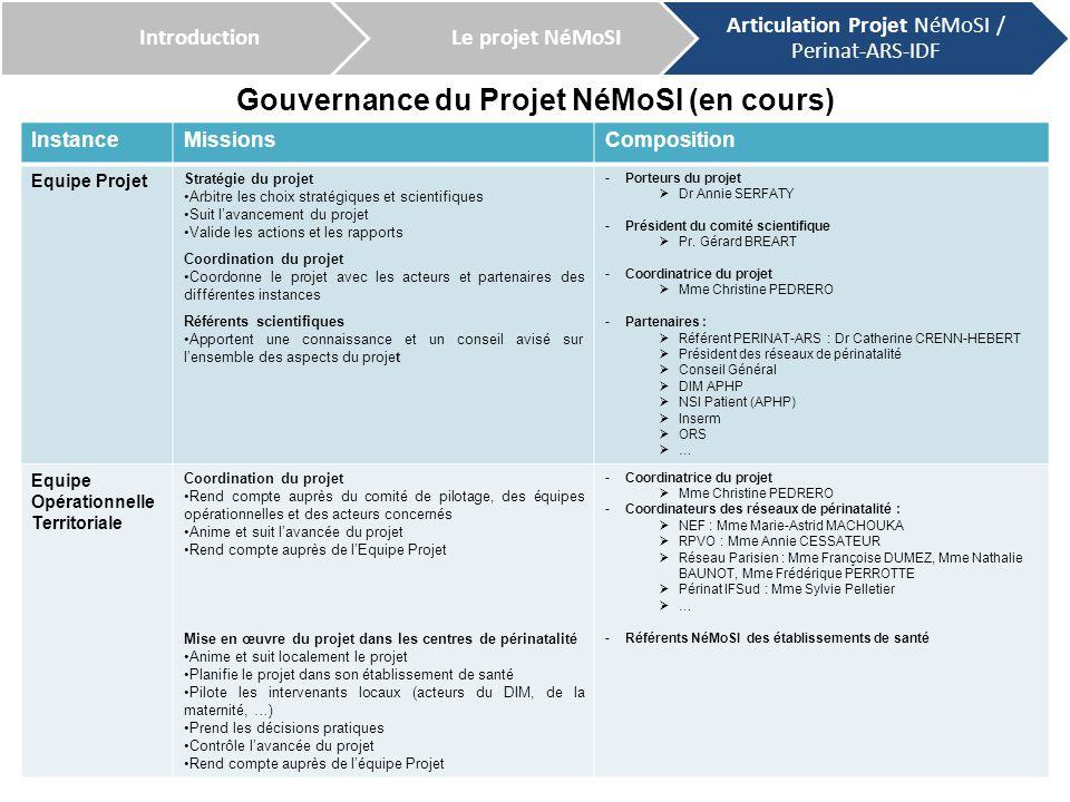 Gouvernance du Projet NéMoSI (en cours)