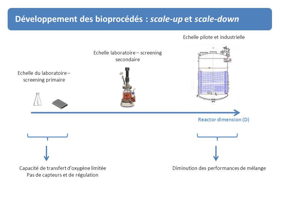 Développement des bioprocédés : scale-up et scale-down