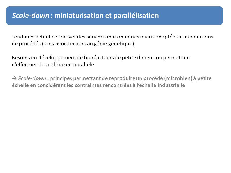 Scale-down : miniaturisation et parallélisation