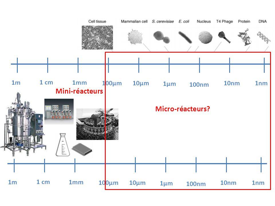 Mini-réacteurs Micro-réacteurs 1m 1 cm 1mm 100µm 10µm 1µm 100nm 10nm