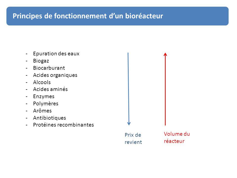 Principes de fonctionnement d'un bioréacteur