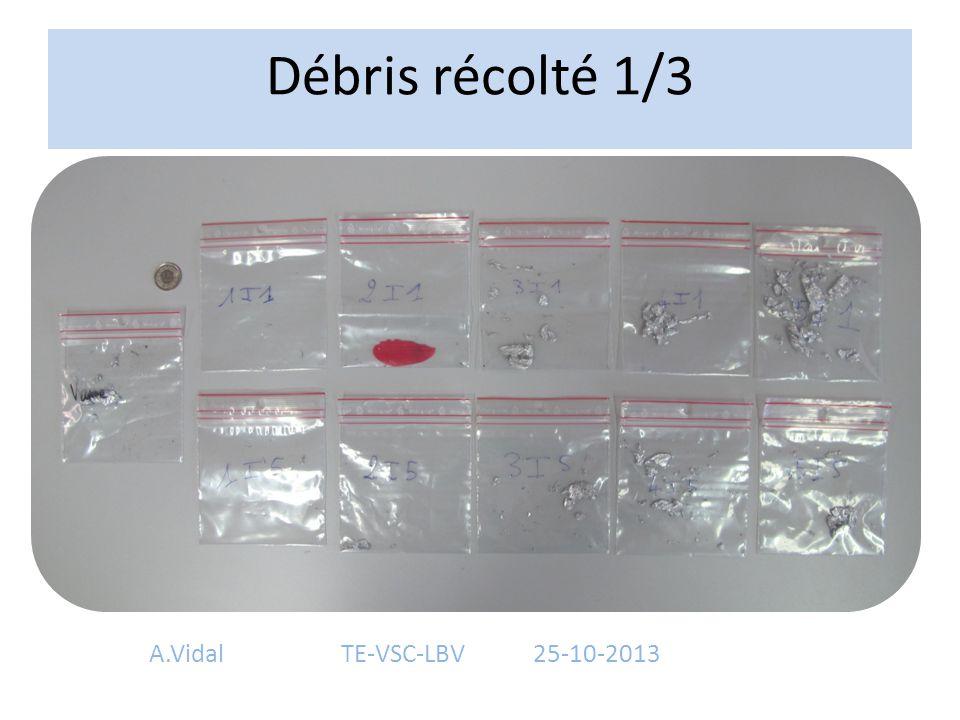 Débris récolté 1/3 A.Vidal TE-VSC-LBV 25-10-2013