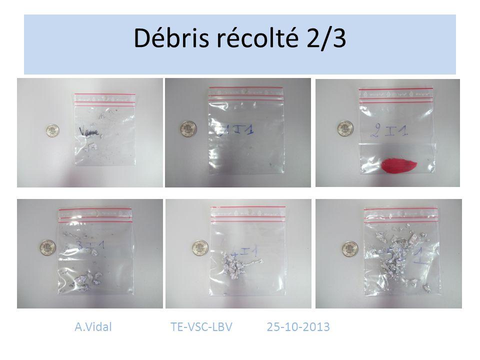 Débris récolté 2/3 A.Vidal TE-VSC-LBV 25-10-2013