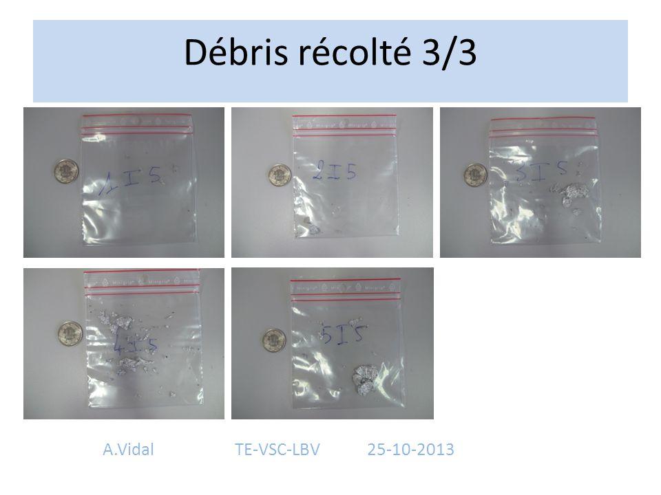 Débris récolté 3/3 A.Vidal TE-VSC-LBV 25-10-2013
