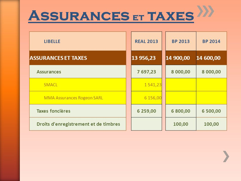 Assurances et taxes ASSURANCES ET TAXES 13 956,23 14 900,00 14 600,00