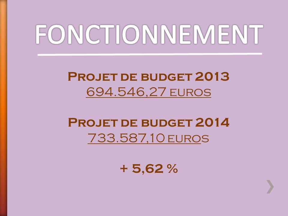 FONCTIONNEMENT Projet de budget 2013 694.546,27 euros