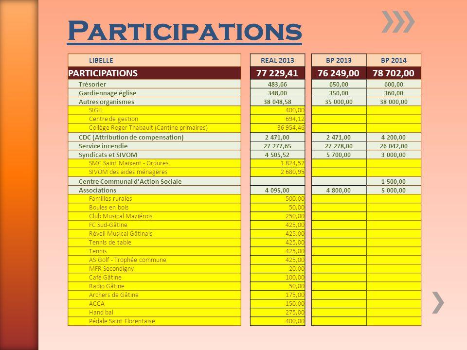 Participations PARTICIPATIONS 77 229,41 76 249,00 78 702,00 LIBELLE
