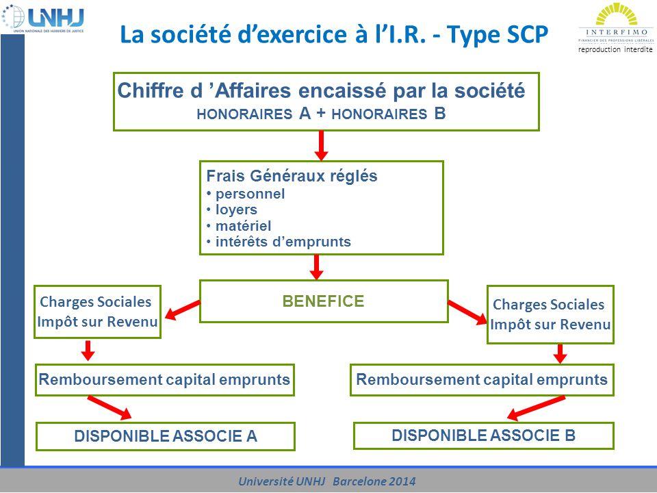 La société d'exercice à l'I.R. - Type SCP