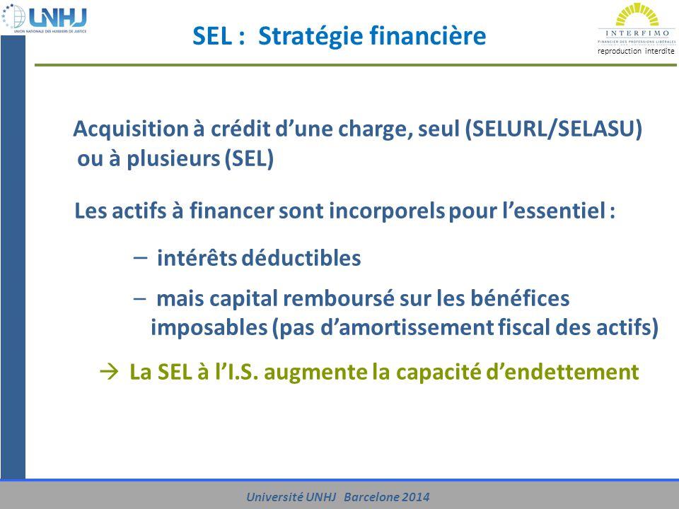 SEL : Stratégie financière