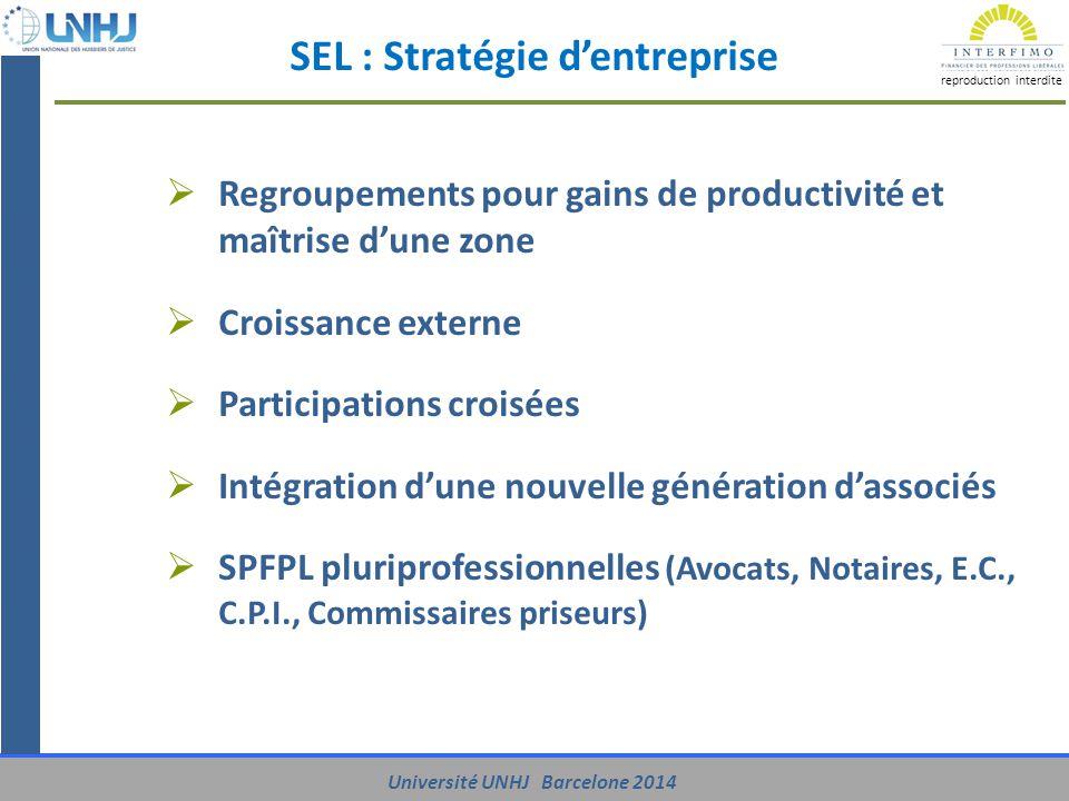 SEL : Stratégie d'entreprise