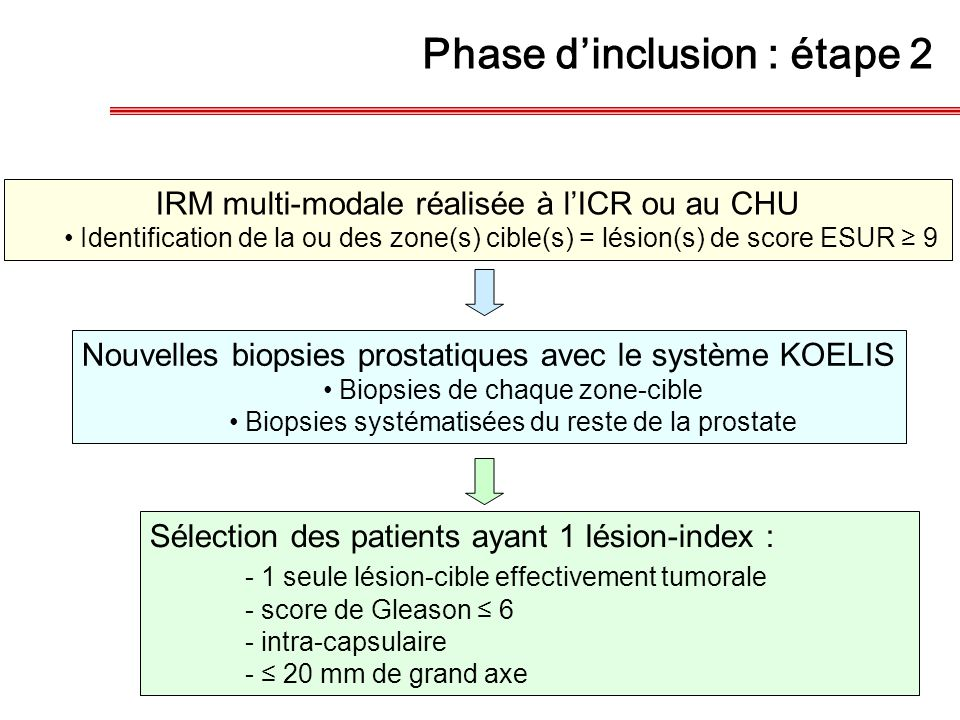 Phase d'inclusion : étape 2