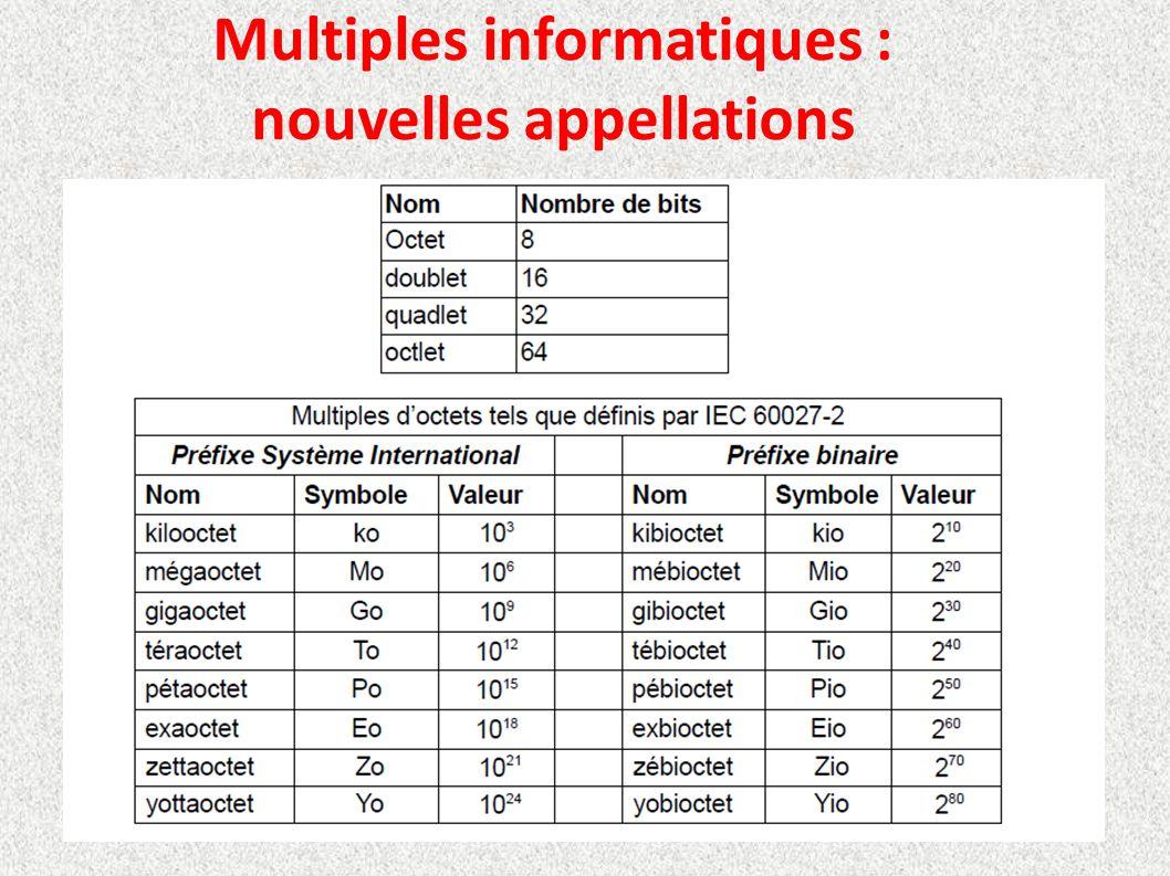 Multiples informatiques : nouvelles appellations