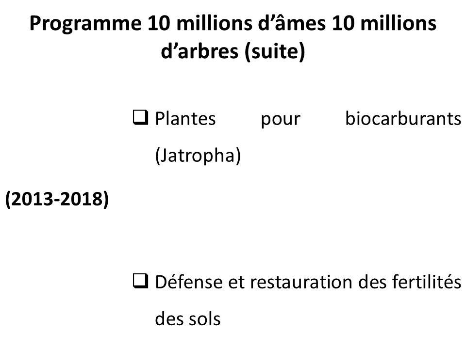 Programme 10 millions d'âmes 10 millions d'arbres (suite)