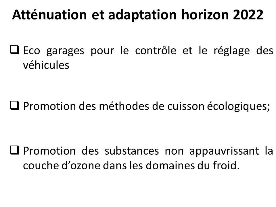 Atténuation et adaptation horizon 2022
