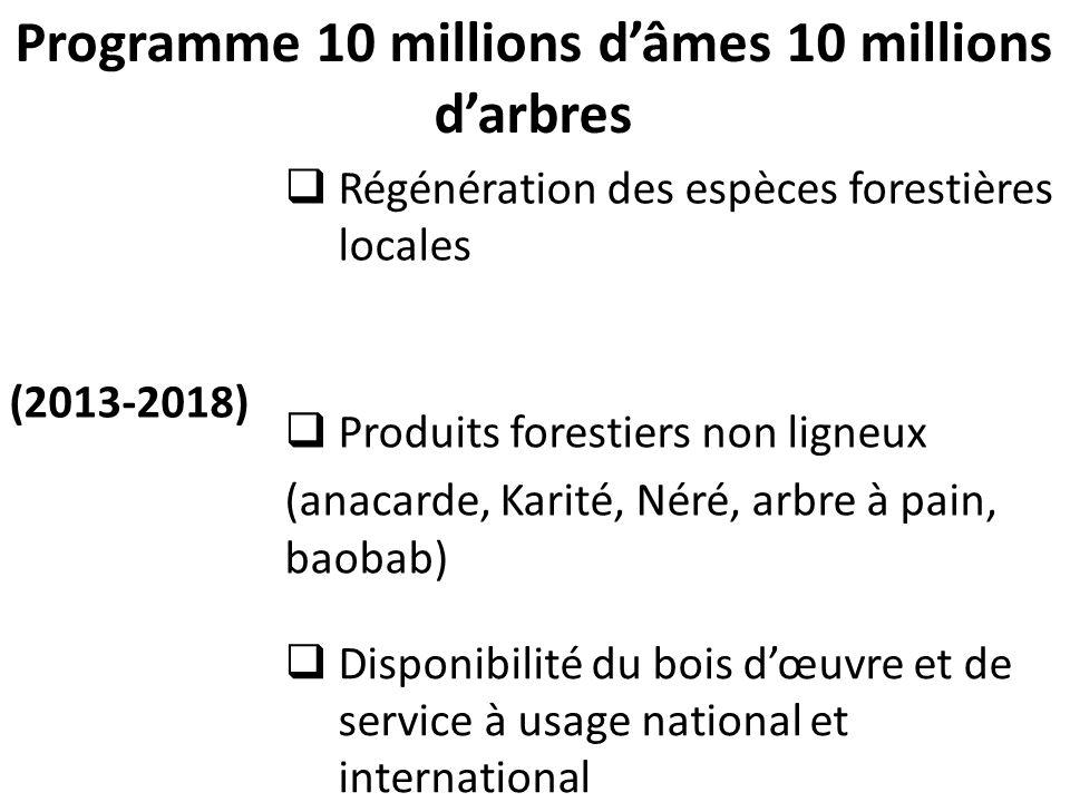 Programme 10 millions d'âmes 10 millions d'arbres