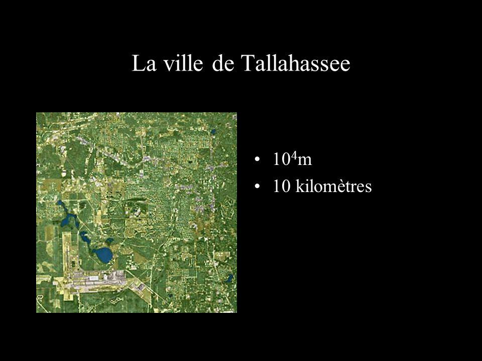 La ville de Tallahassee