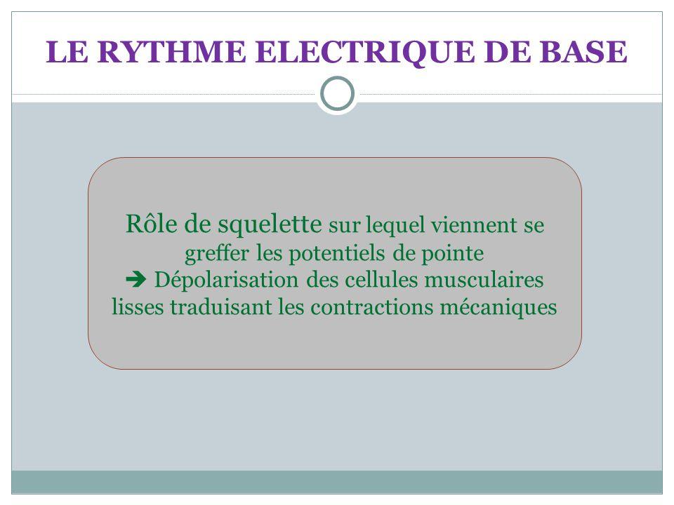 LE RYTHME ELECTRIQUE DE BASE