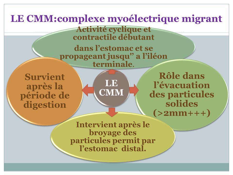 LE CMM:complexe myoélectrique migrant