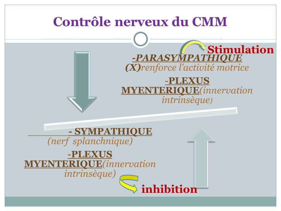 Contrôle nerveux du CMM