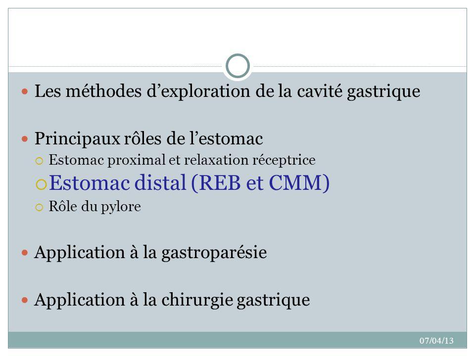 Estomac distal (REB et CMM)
