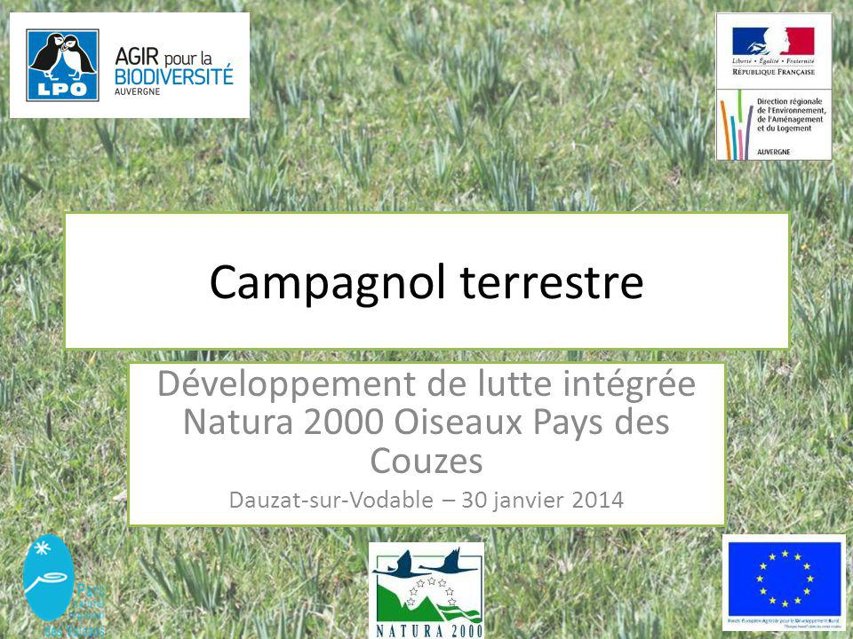 Campagnol terrestre Développement de lutte intégrée Natura 2000 Oiseaux Pays des Couzes.