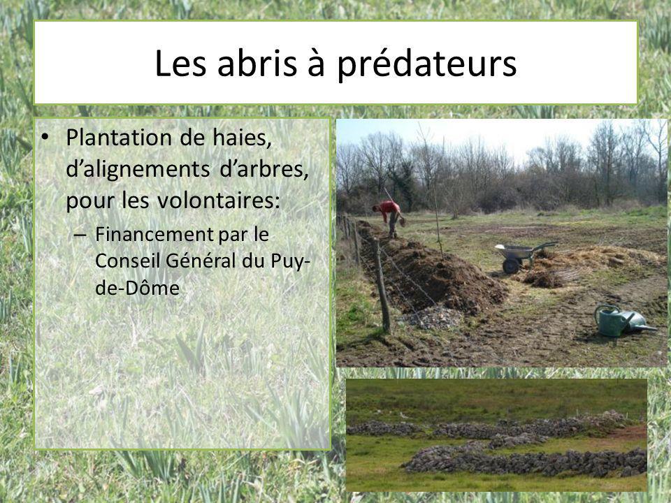 Les abris à prédateurs Plantation de haies, d'alignements d'arbres, pour les volontaires: Financement par le Conseil Général du Puy-de-Dôme.