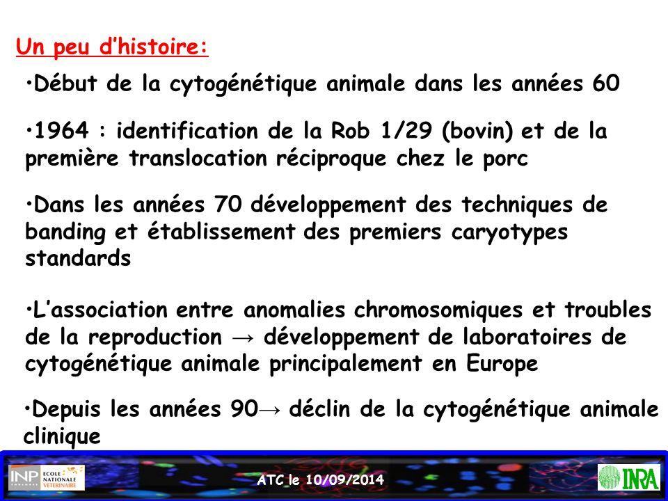 Début de la cytogénétique animale dans les années 60