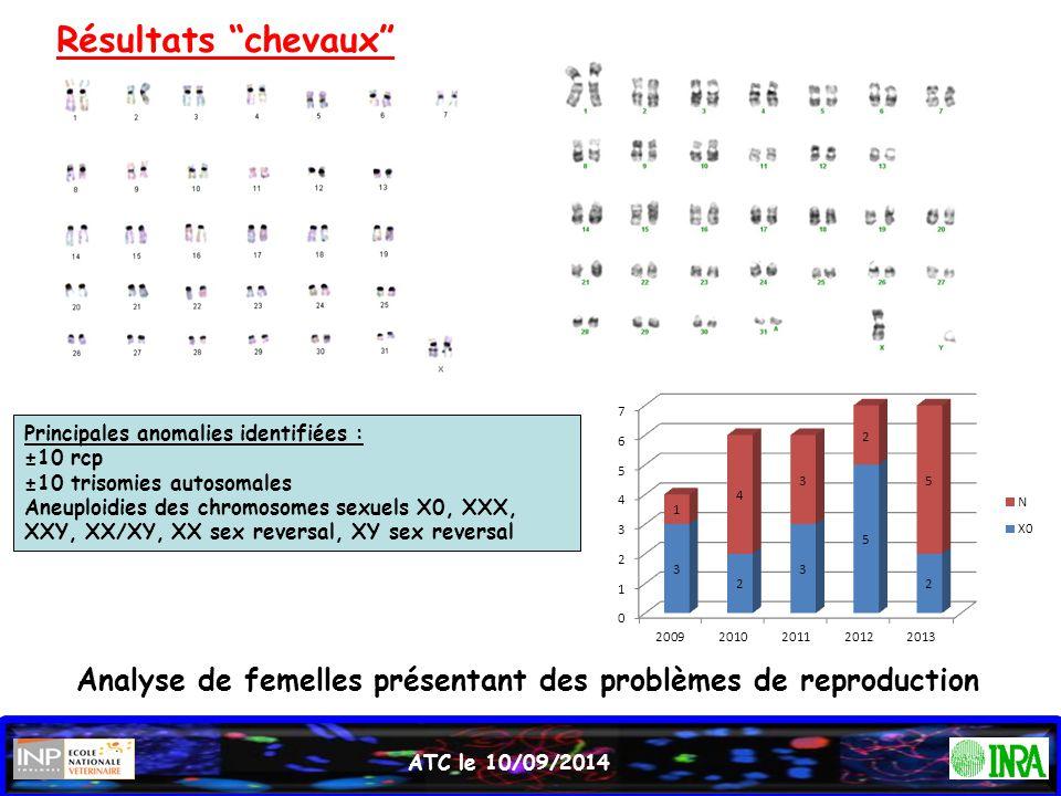 Résultats chevaux Principales anomalies identifiées : ±10 rcp. ±10 trisomies autosomales.