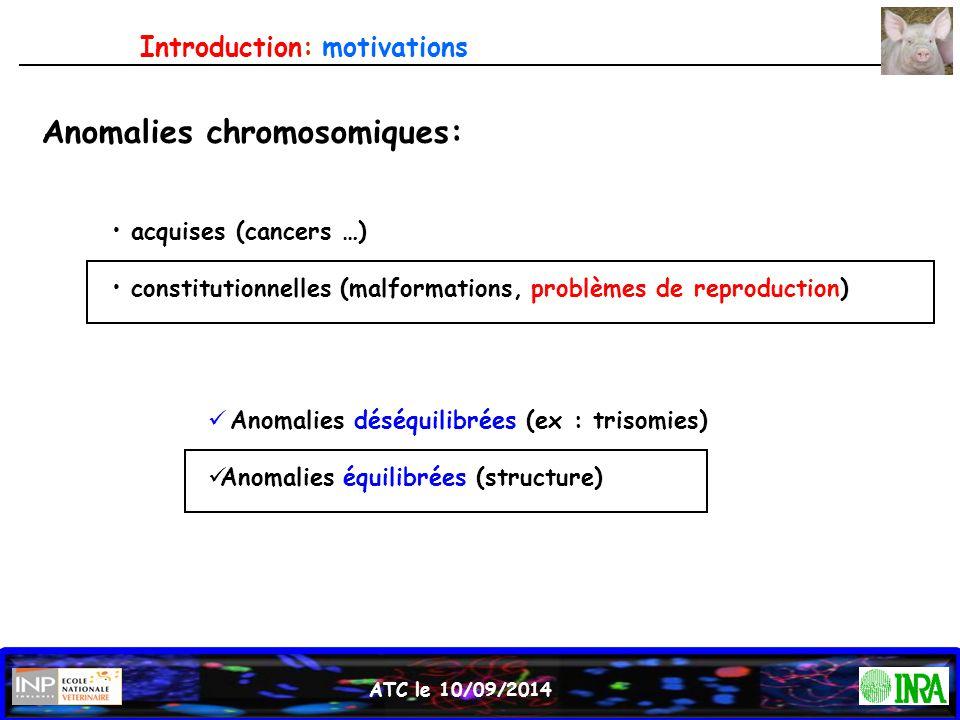 Anomalies chromosomiques:
