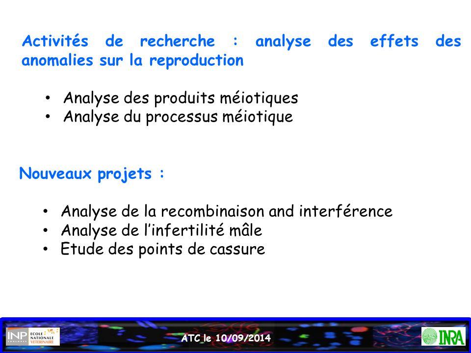 Analyse des produits méiotiques Analyse du processus méiotique
